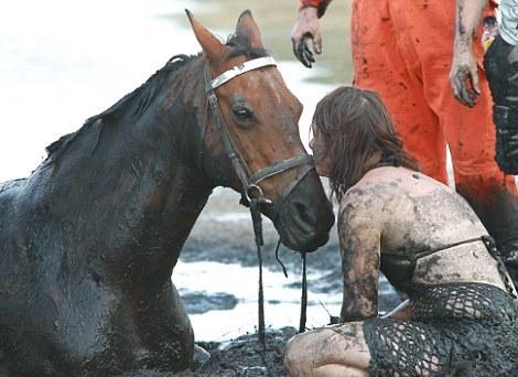 Cavallo Astro liberato dopo tre ore dalle sabbie mobili01