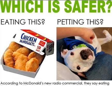 McDonald's meglio di un pitbull 01