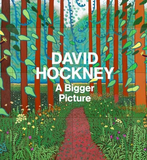 David Hockney libro 04