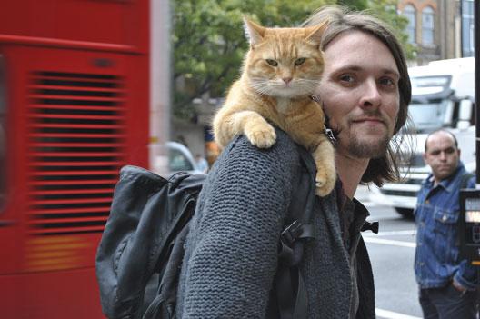 James Bowen gatto Bob 15