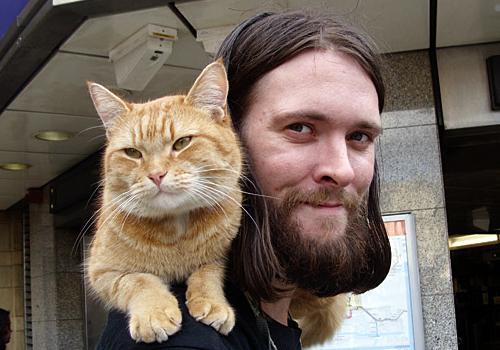 James Bowen gatto Bob 12