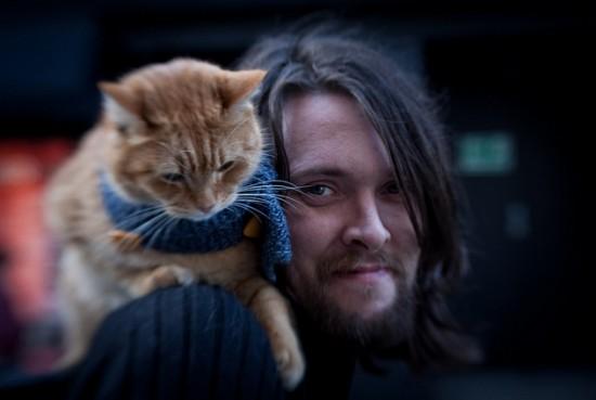 James Bowen gatto Bob 10