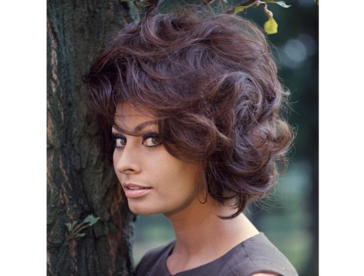 Sophia Loren, Brigitte Bardot, Shirley McLane: 80 anni di fascino e storia