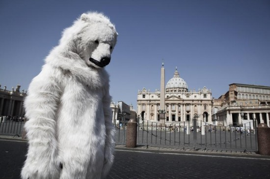 Polar Bear At Vatican City