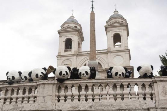 Incontra i Panda, lancio di Global Pambassador 2012 05