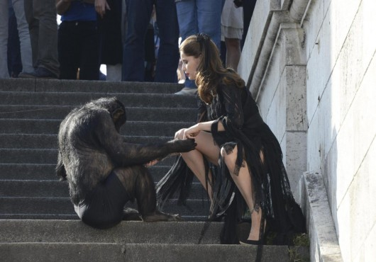 Laetitia Casta shooting con uno scimpanze03