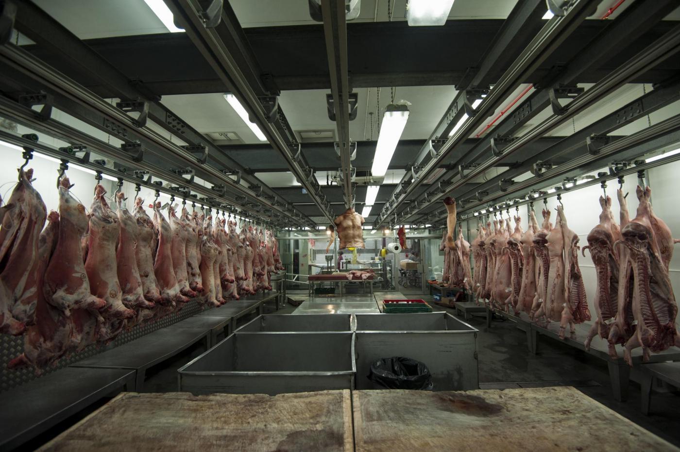 La macelleria 'Human butchery' apre a Londra06
