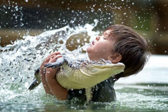 Australia, riesce a domare un alligatore a soli tre anni 02