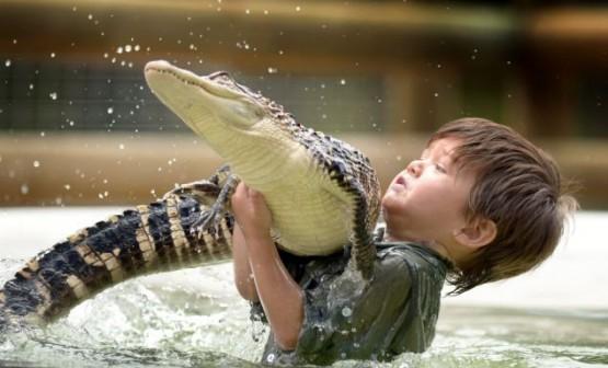 Australia, riesce a domare un alligatore a soli tre anni 01