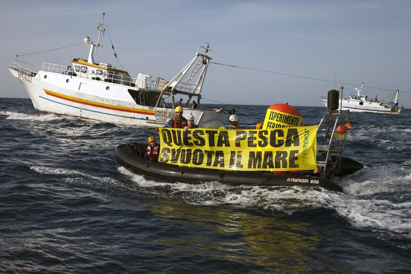 Fisheries Action in Sicily04