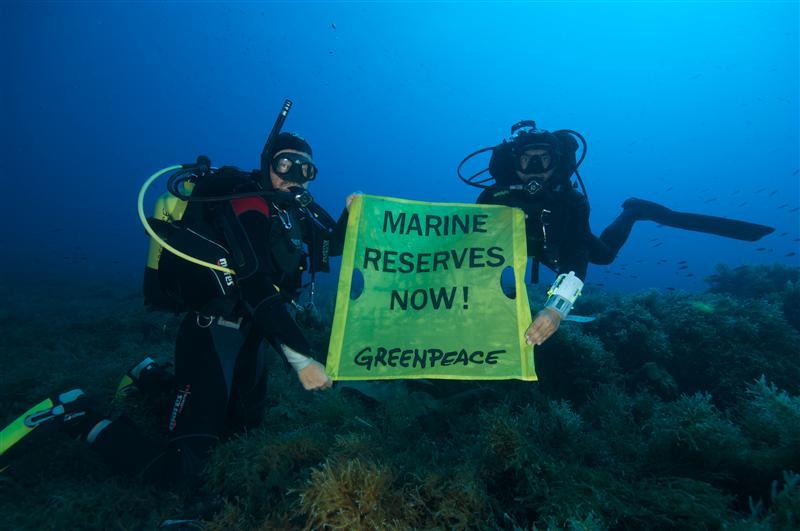 Greenpeace Divers in the Mediterranean Sea11