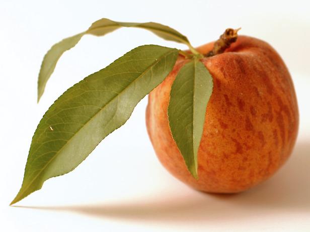 Caldo, aiuti naturali contro afa e stanchezza: guaranà, zenzero, ciliegie...