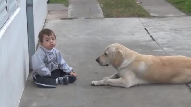 Friendly_dog _Hernan