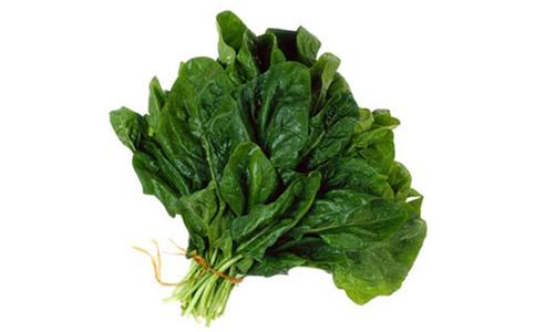 Spinaci e cicoria le verdure più efficaci contro malattie croniche