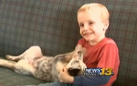 Usa Hunter 6 anni, dà bacio sulla guancia a compagna la scuola lo sospende