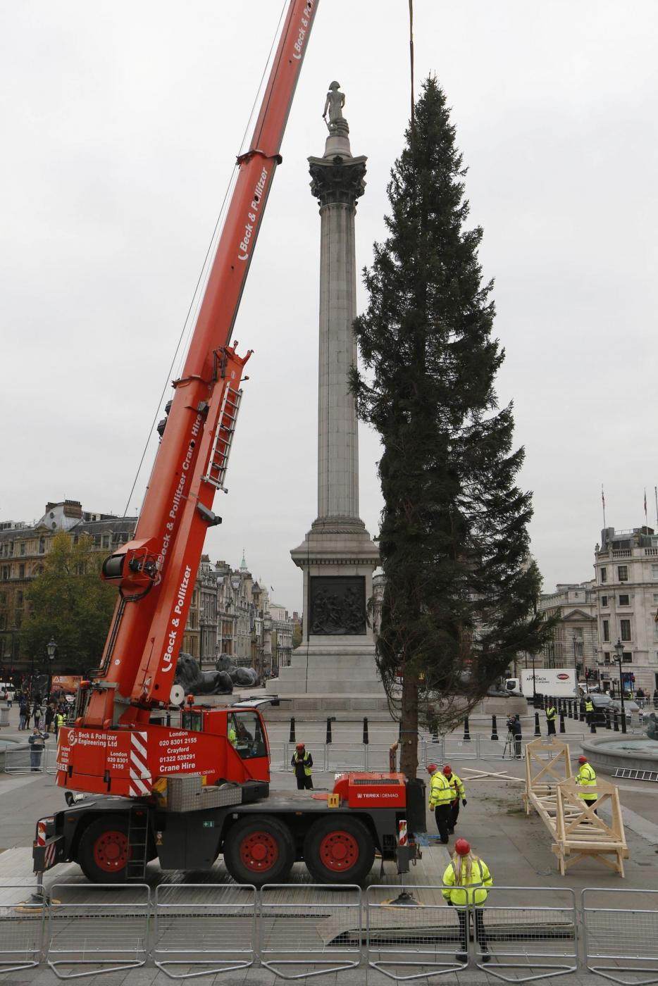 Londra, l'albero di Natale di Trafalgar Square04
