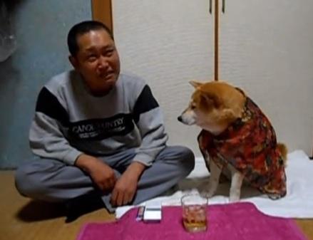 Padrone beve troppo cane lo aiuta a smettere di bere con le zampe