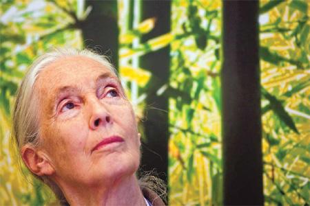 Rallentare l'invecchiamento per combattere Alzheimer e Parkinson