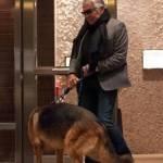 Roberto Cavalli, shopping a via della Spiga con la Lina e Lupo07