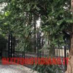 George Clooney a Amal Alamuddin, le foto esclusive di Villa Oleandra 5
