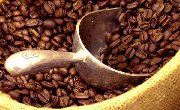 Caffè fa bene al fegato: ma decaffeinato è meglio