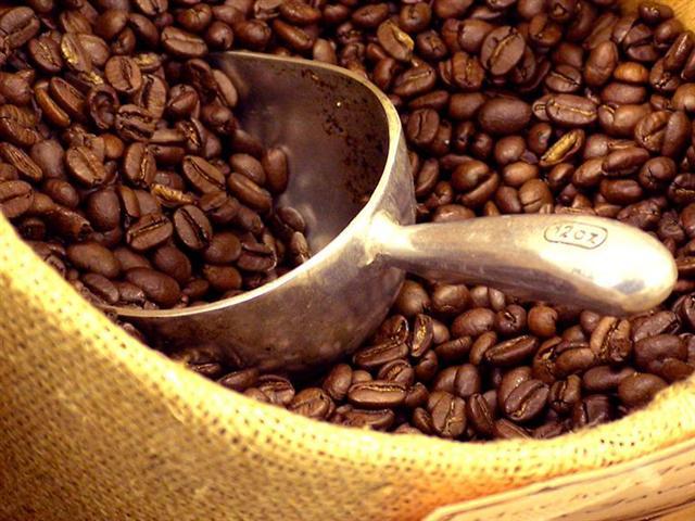 Alzheimer, caffè per allontanarlo: quante tazze berne ogni giorno