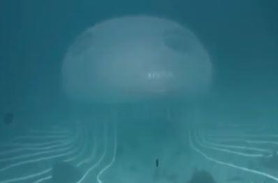 Dubai, apre primo negozio subacqueo al mondo VIDEO