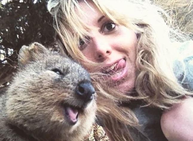 In posa con il quokka per un selfie: la nuova moda che viene dall'Australia FOTO