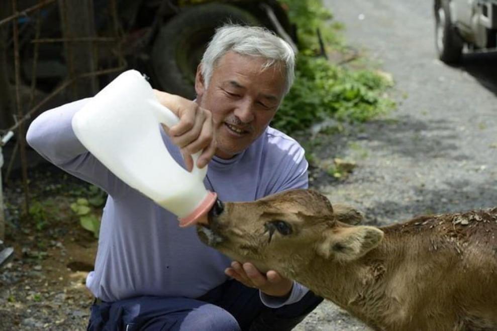 Naoto Matsumura vive nella città radioattiva con i suoi animali