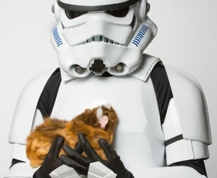 """Guerre Stellari, Dart Fener e altri """"cattivi"""" posano con animali abbandonati FOTO12"""