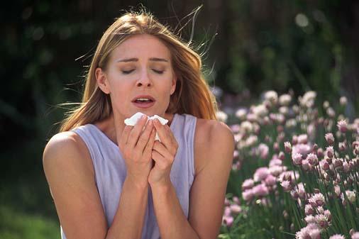 Allergie ai pollini, 6 milioni di italiani colpiti. In città è peggio
