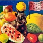 """Frida Kahlo, il suo giardino """"trapiantato"""" nel Bronx: cactus, calle, oleandri04"""