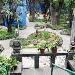 """Frida Kahlo, il suo giardino """"trapiantato"""" nel Bronx: cactus, calle, oleandri05"""