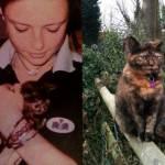Cani e gatti di casa, la prima e l'ultima FOTO insieme4