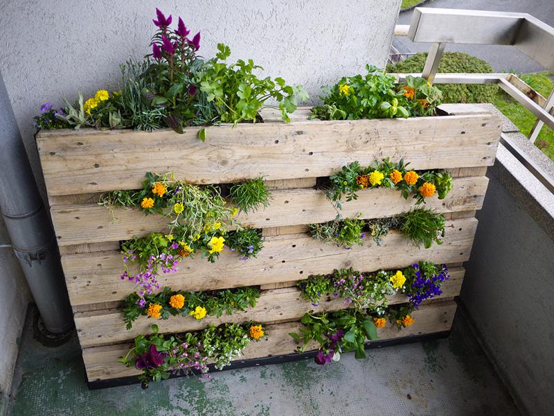 Decorazione Vasi Da Giardino : Pallet tante idee per arredare casa e giardino a costo zero o