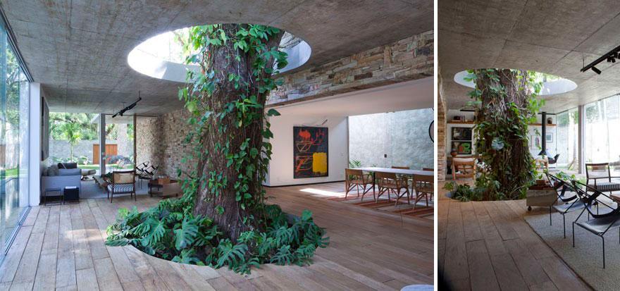 Gli edifici in cui gli architetti si sono rifiutati di tagliare gli alberi7