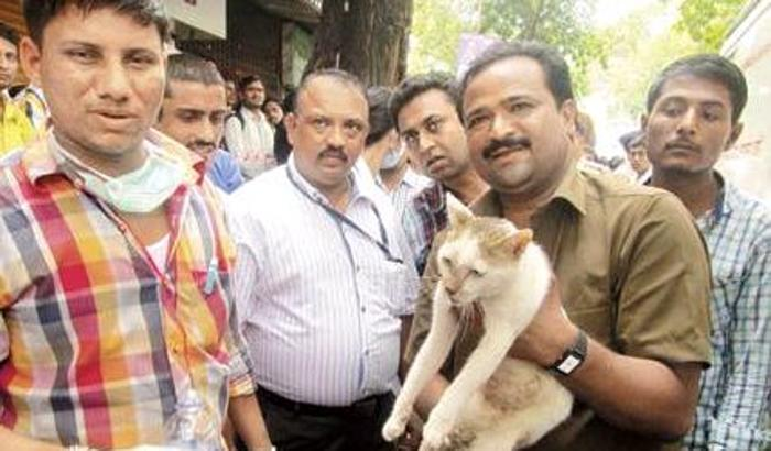 India, crolla palazzo: uomo salva la gatta di casa e muore