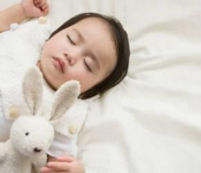 Camillo, il coniglio che mette a nanna i bimbi. Libro best seller su Amazon