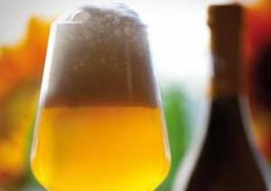 Artrite, il vino protegge, la birra aumenta il rischio