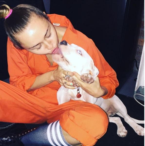 Miley Cyrus pomicia col suo nuovo cane FOTO Instagram3