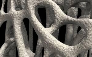 Decalogo anti osteoporosi