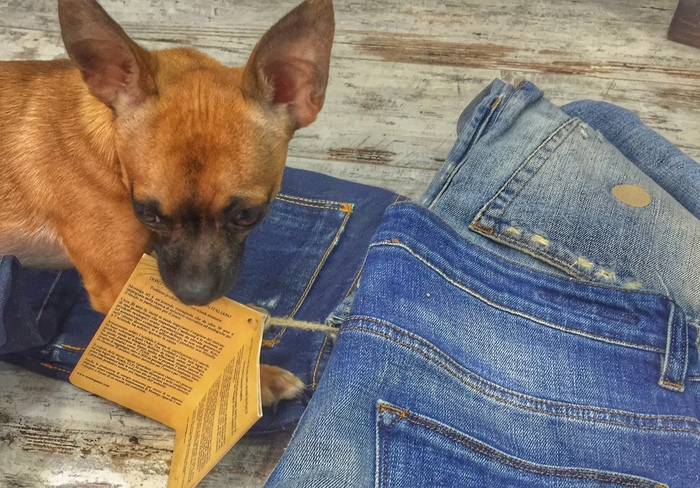 Jeans vegani: quando la moda è animalista