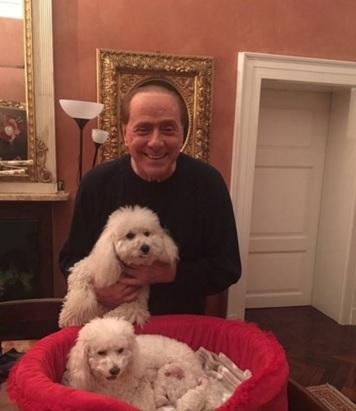 Berlusconi e Francesca Pascale felicissimi: i cuccioli di Dudù3