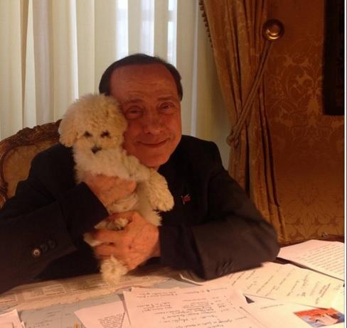 Berlusconi e Francesca Pascale felicissimi: i cuccioli di Dudù