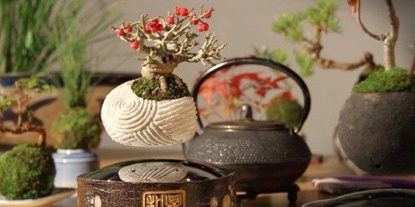 Air bonsai che levita grazie ai magneti8