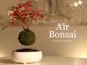 Air bonsai che levita grazie ai magneti6