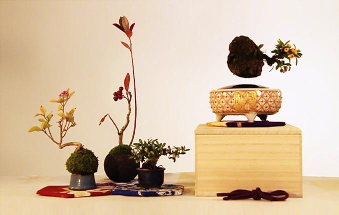 Air bonsai che levita grazie ai magneti5