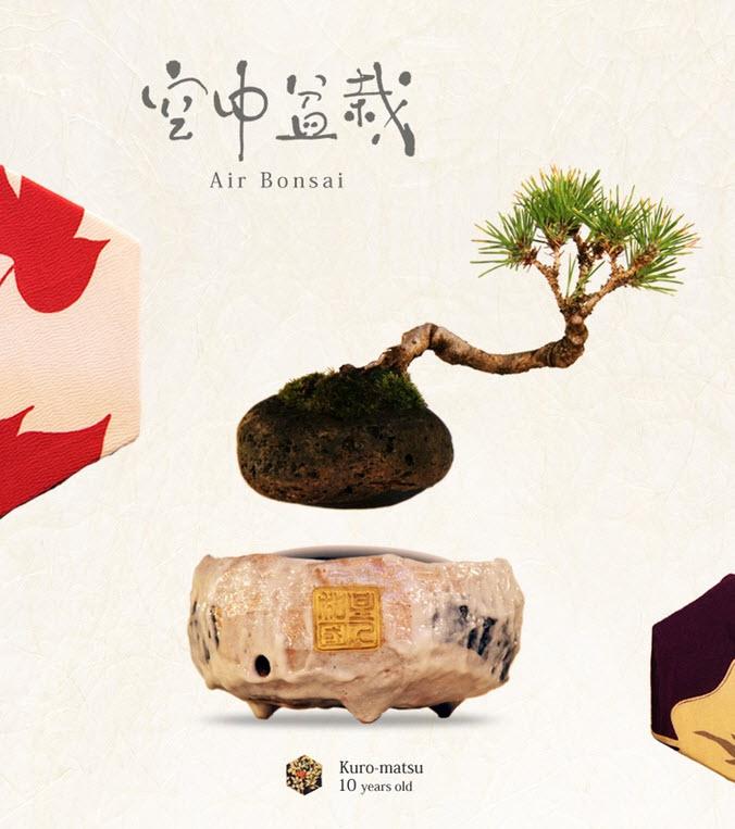 Air bonsai che levita grazie ai magneti4