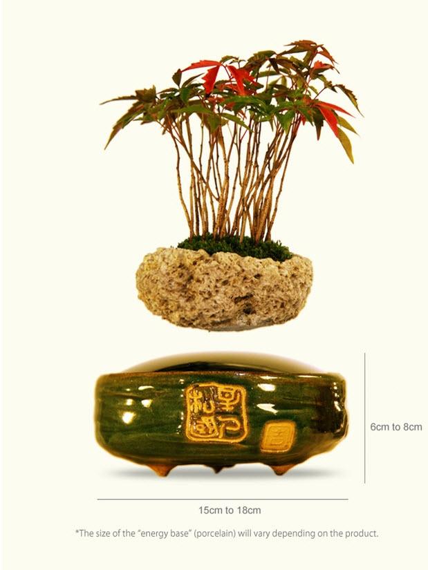 Air bonsai che levita grazie ai magneti2