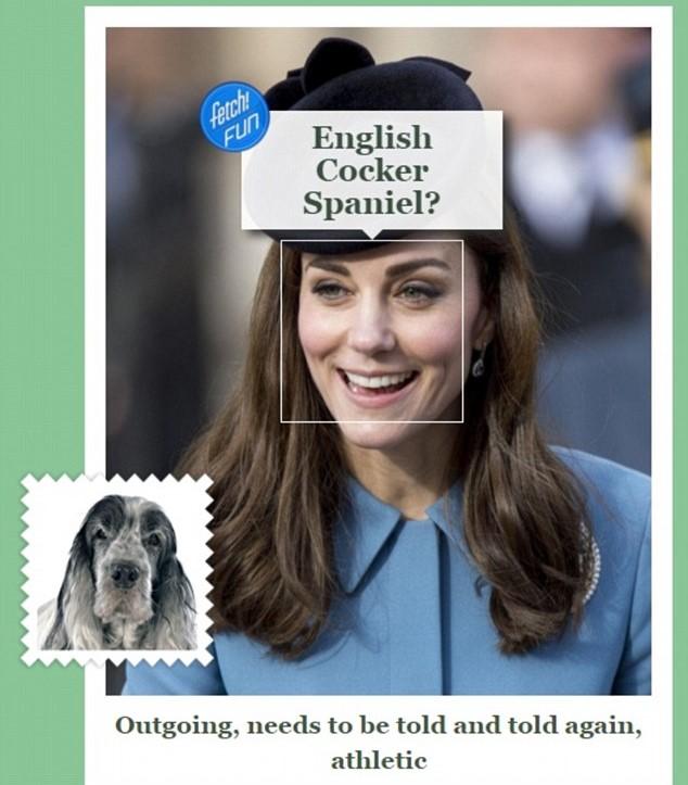 Kate Middleton assomiglia a un cane FOTO: inglesi contro Duchessa